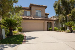 Photo of 7807 E Rainview Court, Anaheim Hills, CA 92808 (MLS # IV20125791)