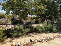Photo of 5799 Halsey Avenue, 29 Palms, CA 92277 (MLS # JT19196828)