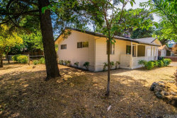 Photo of 15075 Pineview Drive, Clearlake, CA 95422 (MLS # LC19166138)