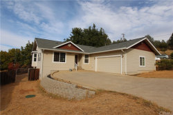 Photo of 10030 El Capitan Way, Kelseyville, CA 95451 (MLS # LC19234916)