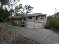 Photo of 7845 Soda Bay Road, Kelseyville, CA 95451 (MLS # LC19263864)