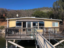 Photo of 10779 E Highway 20, Clearlake Oaks, CA 95423 (MLS # LC20030635)