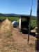Photo of 6245 Gold Dust Drive, Kelseyville, CA 95451 (MLS # LC20032583)