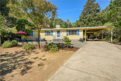 Photo of 11392 E Highway 20, Clearlake Oaks, CA 95423 (MLS # LC20104901)