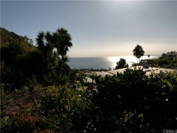 Photo of 1150 Skyline Drive, Laguna Beach, CA 92651 (MLS # LG19241718)