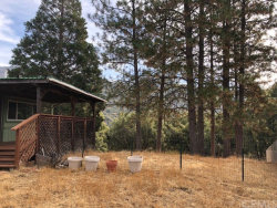 Tiny photo for 2404 Golden Court, Mariposa, CA 95338 (MLS # MP18264846)