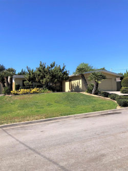 Photo of 1056 Bluesage Drive, San Marcos, CA 92078 (MLS # NDP2001184)
