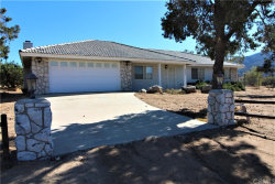 Photo of 63260 Palm Canyon Drive, Mountain Center, CA 92561 (MLS # OC19263023)