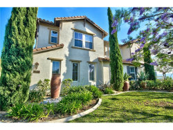 Photo of 210 Friesian Street, Norco, CA 92860 (MLS # PW17121913)