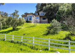 Photo of 16302 Placerita Canyon Road, Newhall, CA 91321 (MLS # SR19061974)
