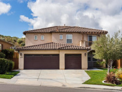 Photo of 44993 Silver Rose Street, Temecula, CA 92592 (MLS # SW19057068)