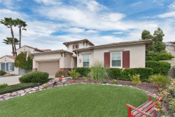 Photo of 31668 Pepper Tree Street, Winchester, CA 92596 (MLS # SW19279965)