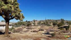 Photo of 8001 Aster Avenue, Yucca Valley, CA 92284 (MLS # 18397926PS)