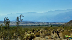 Photo of 8 Terry Drive, Desert Hot Springs, CA 92240 (MLS # 19446562PS)