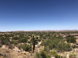 Photo of 596 Griffith Rd 231-35, Yucca Valley, CA 92284 (MLS # 19497706PS)