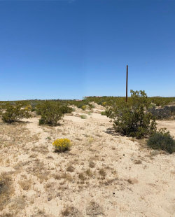 Photo of 0 Canterbury Street, Joshua Tree, CA 92252 (MLS # 219042818DA)