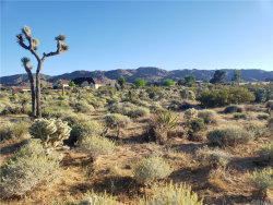 Photo of 0 Alta Loma Drive, Joshua Tree, CA 92252 (MLS # CV20093548)