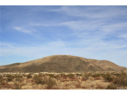 Photo of 0 Fran Lou Lane, Joshua Tree, CA (MLS # JT18026151)