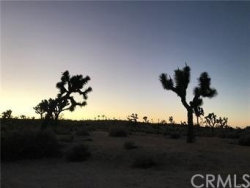 Photo of 52 Sunflower, Yucca Valley, CA 92284 (MLS # JT18285327)