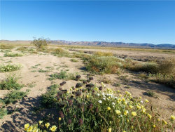 Photo of 0 Sunfair, Joshua Tree, CA (MLS # JT19088846)