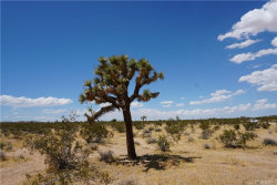 Photo of 1000 Highland View Drive, Joshua Tree, CA 92252 (MLS # JT19171421)