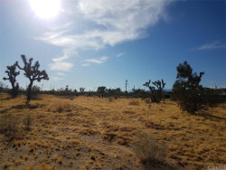 Photo of 0 Marvin Drive, Yucca Valley, CA (MLS # JT19247001)