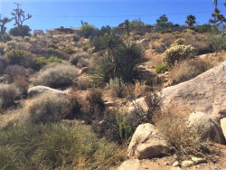 Photo of 7770 Pinon Drive, Yucca Valley, CA 92284 (MLS # JT19248116)