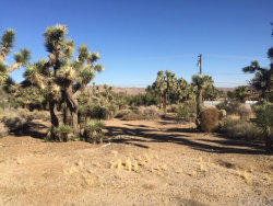 Photo of 0 Free Gold Drive, Yucca Valley, CA 92284 (MLS # JT19264819)