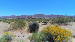 Photo of 7011 Redondo Avenue, Joshua Tree, CA 92252 (MLS # JT20090980)