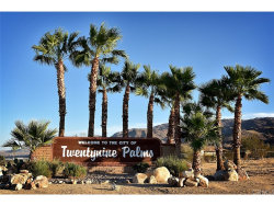Photo of 0 Pinto Mountain Road, 29 Palms, CA (MLS # SB17270484)