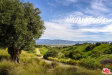 Photo of 2775 Roundup Road, Santa Ynez, CA 93460 (MLS # 19446886)