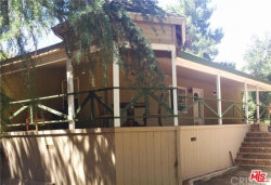 Photo of 13006 Sierra Highway, Agua Dulce, CA 91390 (MLS # 19470540)