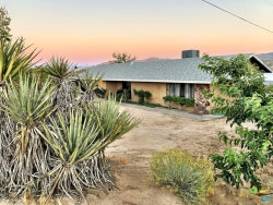 Photo of 57455 Paxton Road, Yucca Valley, CA 92284 (MLS # 19483068PS)
