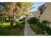 Photo of 18411 Hatteras Street, Unit 246, Tarzana, CA 91356 (MLS # 219002132)