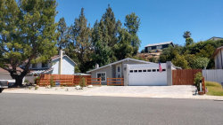 Photo of 30655 Lakefront Drive, Agoura Hills, CA 91301 (MLS # 219009407)