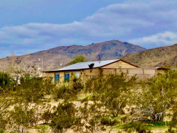 Photo of 2316 Wamego Trail, Landers, CA 92285 (MLS # 219040894PS)