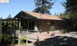 Photo of 7248 Maidu Drive, Placerville, CA 95667 (MLS # 40904274)