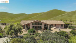 Photo of 7400 Collier Canyon Rd, Livermore, CA 94551 (MLS # 40905011)