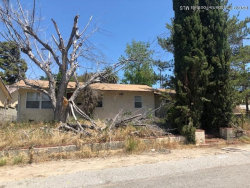 Photo of 10504 Las Lunitas Avenue, Tujunga, CA 91042 (MLS # 819003276)
