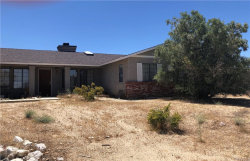 Photo of 17116 E Avenue W4, Llano, CA 93544 (MLS # CV20189144)