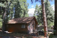 Photo of 9380 Cedar Drive, Forest Falls, CA 92339 (MLS # EV19118649)