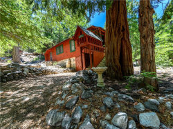 Photo of 41583 Summit Drive, Forest Falls, CA 92339 (MLS # EV20115828)