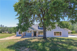 Photo of 42078 Wild Stallion Court, Coarsegold, CA 93614 (MLS # FR19214018)