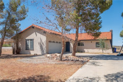 Photo of 26702 Lakeview Drive, Helendale, CA 92342 (MLS # IV19085257)