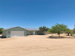 Photo of 50350 Quailbush Road, Johnson Valley, CA 92285 (MLS # JT19177757)