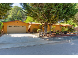 Photo of 2841 Bender Drive, Lucerne, CA 95458 (MLS # LC18121909)