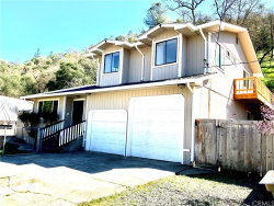 Photo of 2891 Bender Drive, Lucerne, CA 95458 (MLS # LC20047051)
