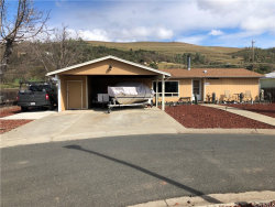 Photo of 13901 Hickory Lane, Clearlake Oaks, CA 95423 (MLS # LC20051092)
