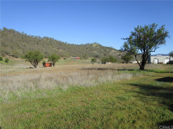 Photo of 18467 E State Hwy 20, Clearlake Oaks, CA 95423 (MLS # LC20069624)