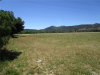 Photo of 10950 Bachelor Valley Road, Upper Lake, CA 95485 (MLS # LC20099948)